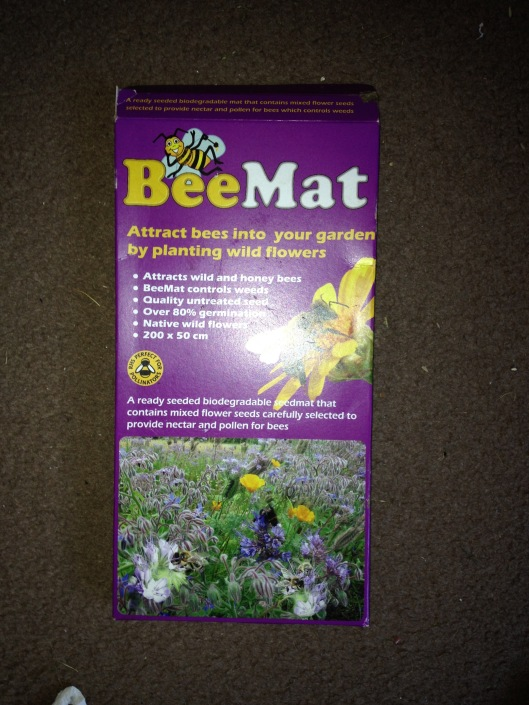 The bee mat of wildflowers favoured by bees and other insects.