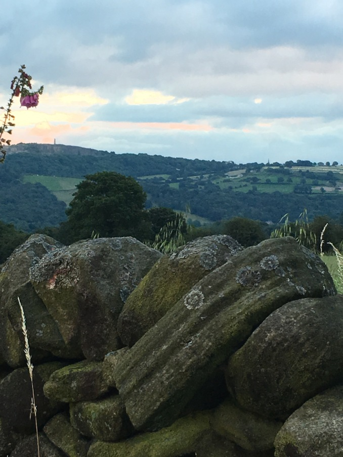 View over the valley from a stone wall.